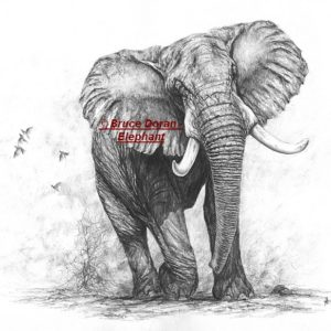 Elephant - Bruce Doran - limited edition print on canvas - 51w x 33h